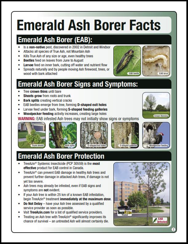 EAB factsheet_001